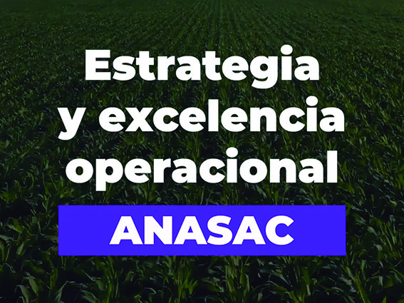 Proyecto.Anasac