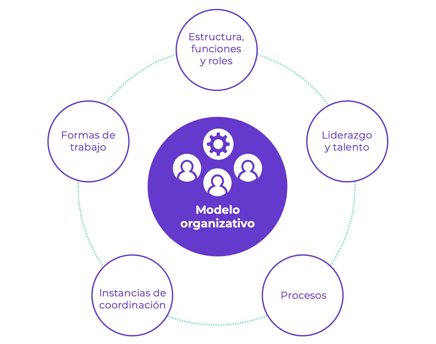 Modelo Organizativo Virtus Partners