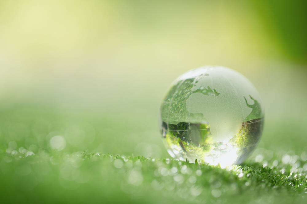 Close up of crystal globe resting on grass in a forest – environment concept