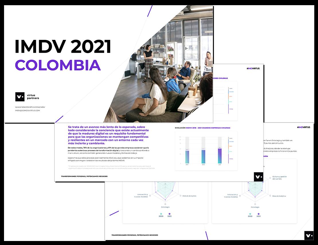 Informe.IMDVCOL.2021